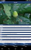 Screenshot of Boom Id