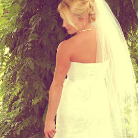 The Dress by Jill Rowlan - Wedding Bride ( wedding, wedding dress, bride, Wedding, Weddings, Marriage )