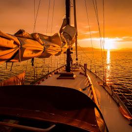 Sunset at Sea by Rob Germain - Transportation Boats ( serene, sunset, ocean, sailboat, golden,  )
