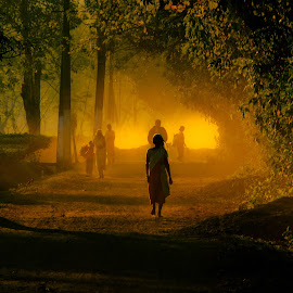 the woman in silhouette by Ankit Mohonto - People Fine Art ( #assam #teaplantations #woman #silhouette #dusk )