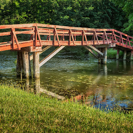 Park near my city by Paul Zeinert - City,  Street & Park  City Parks ( bryan, water, wood, forest, usa, woods, north america, ohio, sunset, creek, summer, trees, bridge, river )
