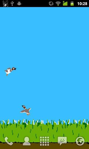 Bird Hunt Lite
