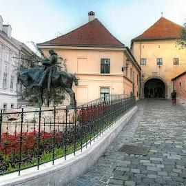 by Marina Đanić - Buildings & Architecture Public & Historical
