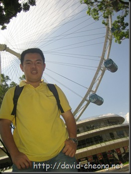 Singapore Flyer and Beyond