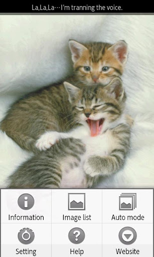 【免費書籍App】ipiks Love cats 1 -kitty nap--APP點子