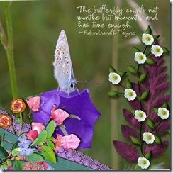 Butterfly080906