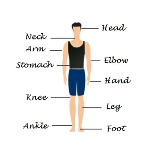 Human Body Facts LOGO-APP點子
