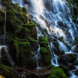 Ramona Falls by Mike Hathenbruck - Landscapes Waterscapes ( oregon, wilderness, nature, waterfall, mt hood, landscape, ramona falls )