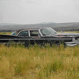 eras past by Verna Harris - Artistic Objects Other Objects ( field, car, vintage car, landscape, rust )
