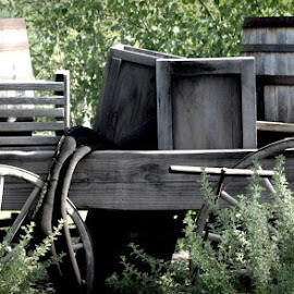 Hard Road to Travel by Penny VanAtta - Artistic Objects Antiques ( barrells., wagon, antiques )