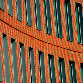 Windows by Satish Noonepalle - Buildings & Architecture Office Buildings & Hotels ( windows,  )