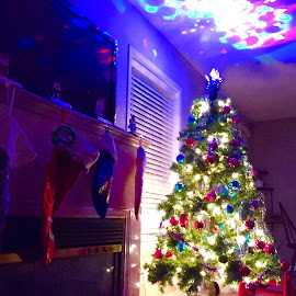 Decorated tree by Trevor Hanson - Instagram & Mobile iPhone ( #christmas tree #christmas #iphone #indoor #lowlight )