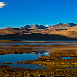 Barren Wetland by Jasminder Oberoi - Landscapes Travel ( canon, canon photo mentor, travel, landscape, nomadic ladakh, light chasers, tso moriri, nature, tso moriri wetland, india, bliss, canon 5d mark ii, workshop, incredible india, jammu and kashmir, ladakh, places, leh, chumangthang, images from india, blue, photo tour, klik, landscape photography, canoon india, masterclass, jas fotography )