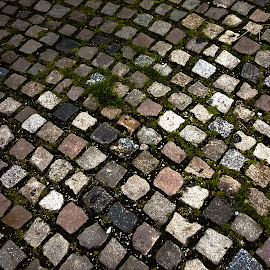 going home by Emina Dedić - Abstract Patterns ( home, stone, cubes, road, past, historic, passage of time, cubical, time, strong, timeless, lovely, cobblestone )
