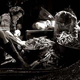 Vegetable Vendor by Ferdinand Ludo - People Portraits of Men ( men at work, peeling the skin off the carrots, carbon market )