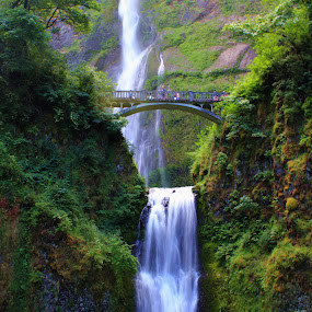 Multnomah Falls by Bryan Rasmussen - Landscapes Waterscapes ( water, oregon, peaceful, multnomah falls, green, waterfall, bridge, multnomah )