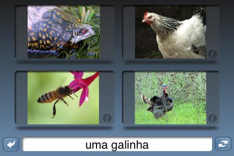 NounStar Learn Portuguese - Fr
