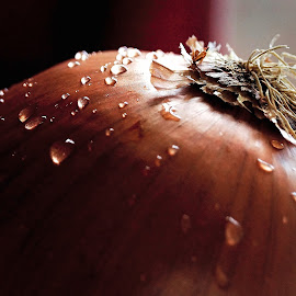 ONION by Georgi Karastoyanov - Food & Drink Fruits & Vegetables ( food, wallpaper, vegetable, close up, onion )