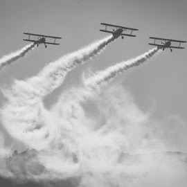 Air Show by Andy Dogaru - Transportation Airplanes ( 3, fog, three, classic, smoke, air show )