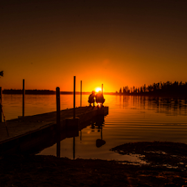 Sunset In Asttin Lake by Joseph Law - Landscapes Sunsets & Sunrises ( camera man, astotin lake, bushes, sunset, woodern bridge, trees, reflections, elk island, viewing, lover )