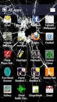 Screenshot of Cracked Screen
