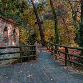 Maaras by Stratos Lales - City,  Street & Park  City Parks ( stream, park, autumn, trees, chapel )