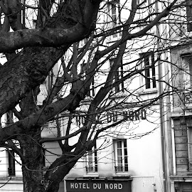 Hotel du Nord by Bruno Gueroult - City,  Street & Park  Historic Districts ( quartier historique, paris, hotel du nord, ville, france, noir et blanc,  )