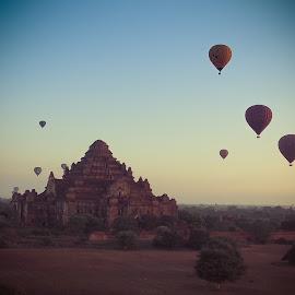 Hotair Balloons over Bagan by Jinny Tan - Landscapes Travel ( temple, building, myanmar, hotair balloon, asia, travel, landscape, bagan )