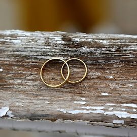 Wedding rings by Ecaterina T. - Wedding Details ( old wooden surface, wedding, union, bridegroom, grey, future family, celebration, bride, just married, golden rings )