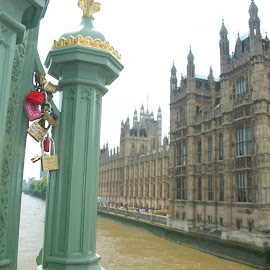 Unedited - Lovers Locks at Westminster Palace by Julie Josey - City,  Street & Park  Historic Districts ( love, london, locks, palace, river,  )