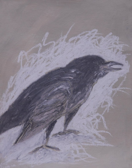 Raven <br> Pastel on paper <br> 11 x 8.5 in