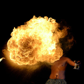 Fire Ball by Fran Juhasz-Mckitrick - News & Events Entertainment