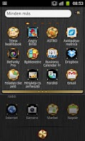 Screenshot of Amplifier GO Launcher EX Theme