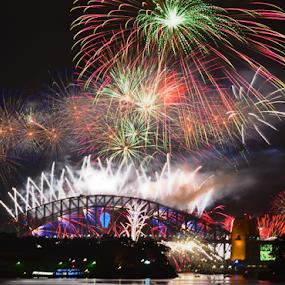 Wow Look At That! by Kamila Romanowska - Abstract Fire & Fireworks ( new year, 2015, australia, fireworks, nye, celebration, sydney )