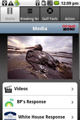 Oil in the Gulf