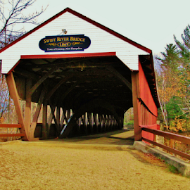 Covered Bridge by Priscilla Renda McDaniel - Buildings & Architecture Bridges & Suspended Structures ( covered bridge,  )