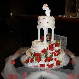 by Todd Reynolds - Wedding Reception