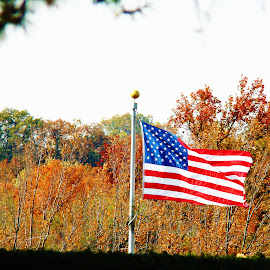 usa by Des Allen - Novices Only Objects & Still Life ( history, flag, park, fall, usa )