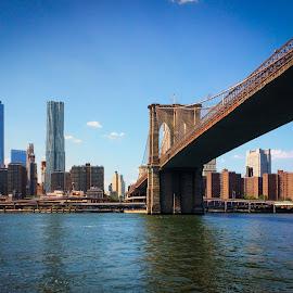 by Dan Lash - Buildings & Architecture Bridges & Suspended Structures ( pier 83, world trade center, iphone, circle line )