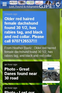 Grand Junction Lost Found Pets - screenshot