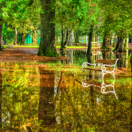 Over flooded bench by Oliver Švob - City,  Street & Park  City Parks ( canon, water, walking path, autum, hdr, park, bench, street, croatia, leaves, urban, parkpath, karlovac, tree, flood, fall, cuty, town,  )