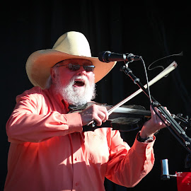 Charlie Daniels by David Downes - People Musicians & Entertainers