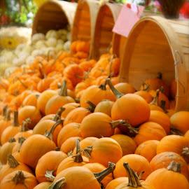 by Deborah Arin - Food & Drink Fruits & Vegetables