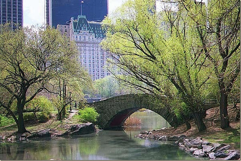 NYispring_CentralPark_cfiles30033