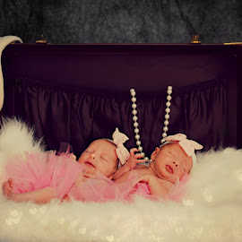 Twins by Shelby Hale - Babies & Children Babies ( girls, vintage, suitcase, precious, newborns, tutus, twins, photography )
