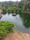 哈哈笑龜池