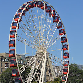 Edinburgh's Festival Wheel 2014 by Dorothy Thomson - City,  Street & Park  Amusement Parks ( scotland, edinburgh, wheel, festival, fun )