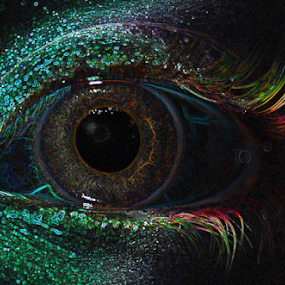 Eyes by Janet Gilmour-Baker - Abstract Macro ( abstract, macro, colorful, colors, close up, eye, eyes,  )