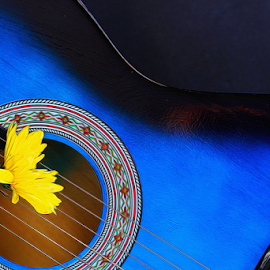 by Dipali S - Artistic Objects Musical Instruments ( music, musical, blue, sound, art, melody, guitar, instrument, romance, flower )