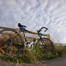 by Nofiansyah D - Transportation Bicycles